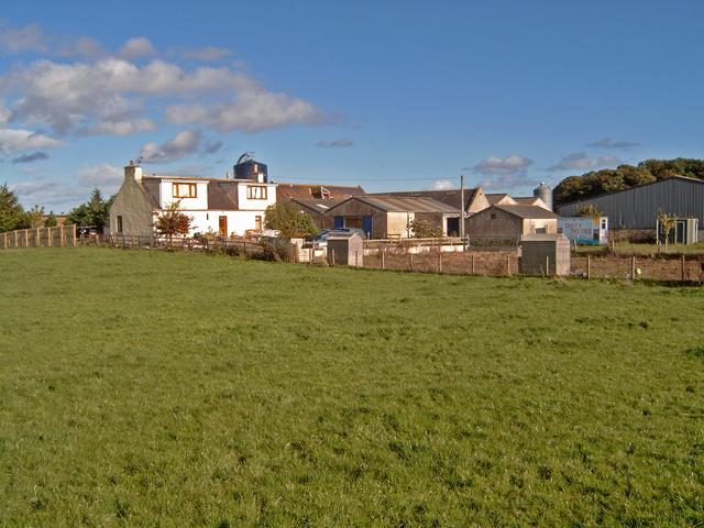 Meadowfield (farm)