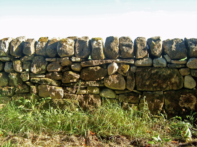 Field Dyke (stone wall)