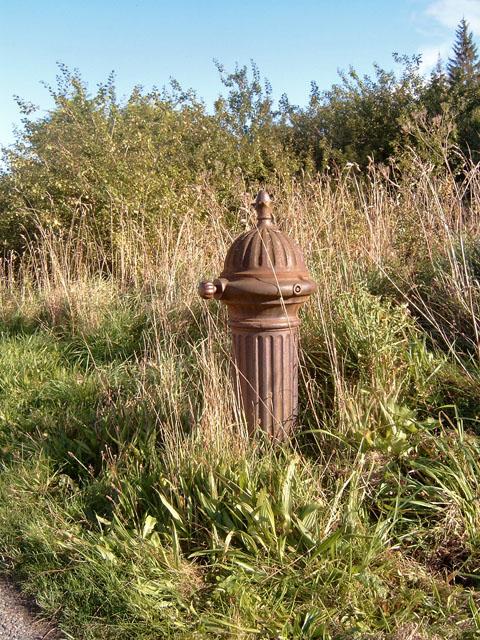 Whitemire village pump