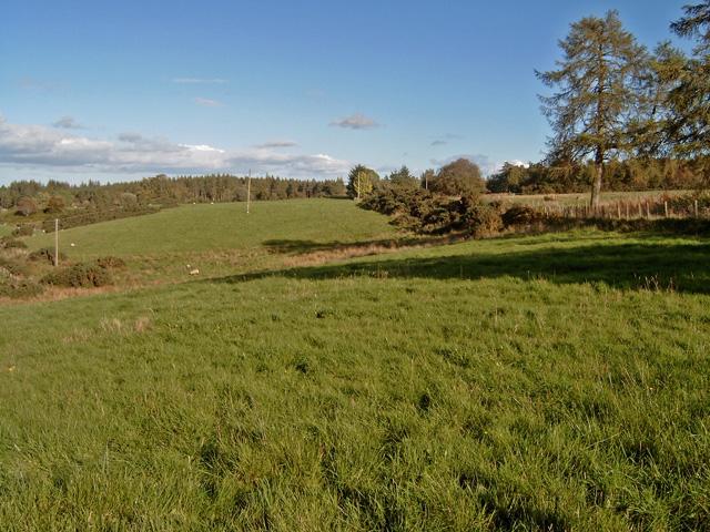 Near Bothiewalls (farm)
