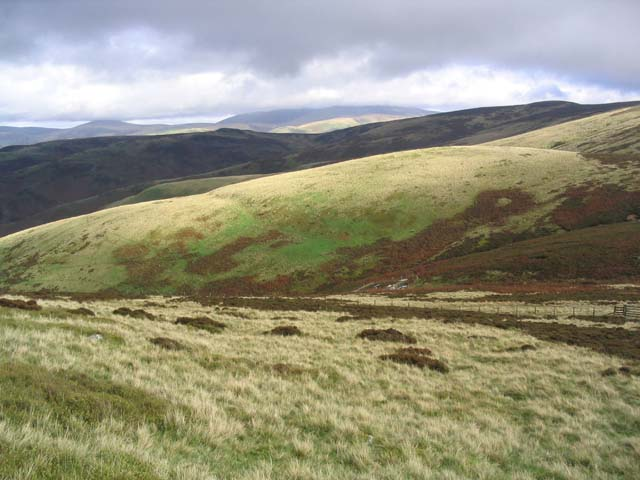 The rolling Cheviot Hills