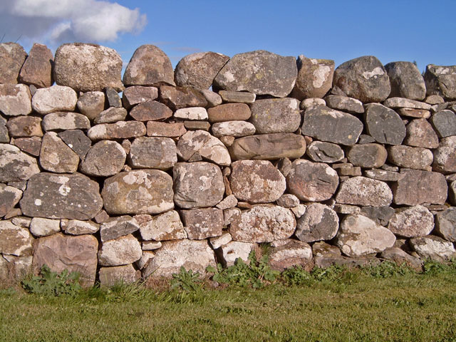 Wall at Wester Milton