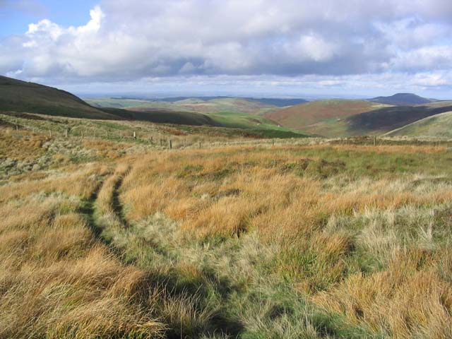 Following a grass track in the Cheviot Hills