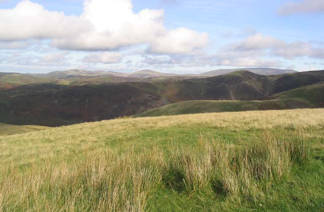 A view to the Eastern Cheviots