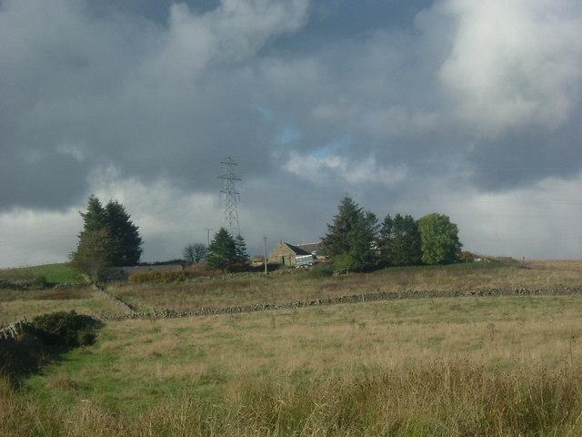 Gallowfield