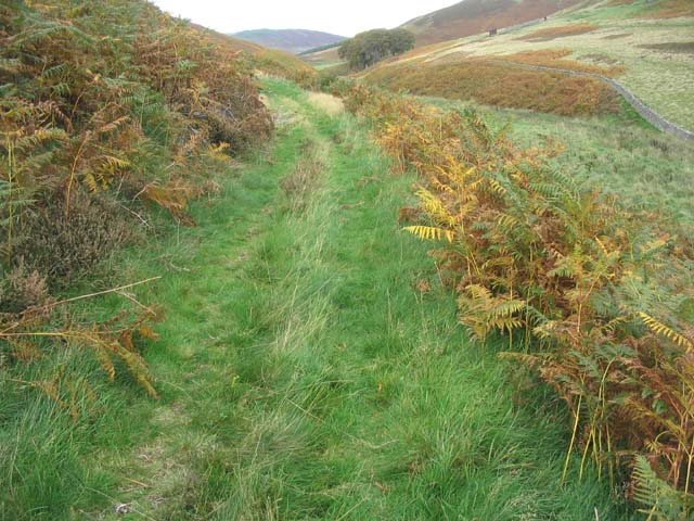 Walking on a track in the Cheviots