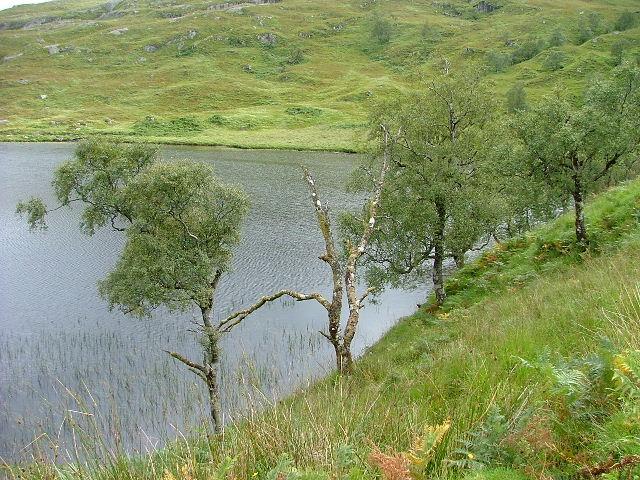 Loch a Choire Beithe