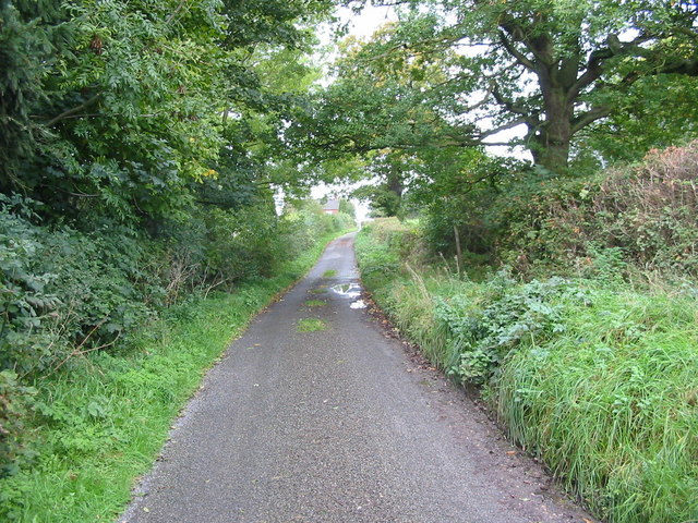 Old Lane near Idridgehay