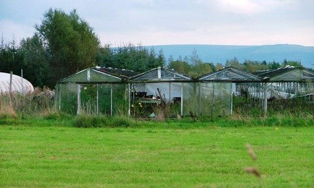 Glasshouses, Off Tunstall Lane