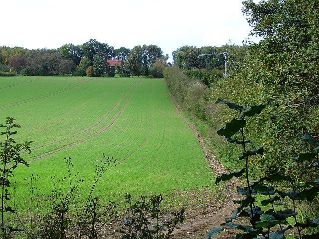 Scooks Farm