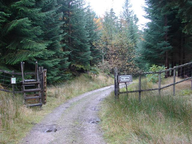 Open gate on the track beside Loch Ossian