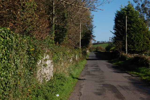 The Spring Lane near Greyabbey (1)