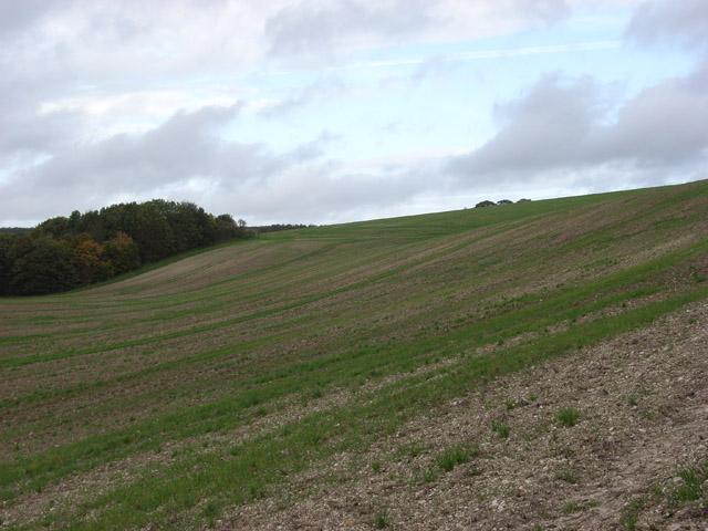 Farmland near Warren Farm