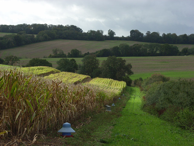 Farmland near Warren Farm