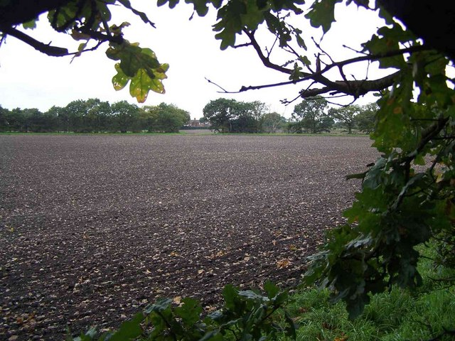 Field Near Grange Farm, Pelsall