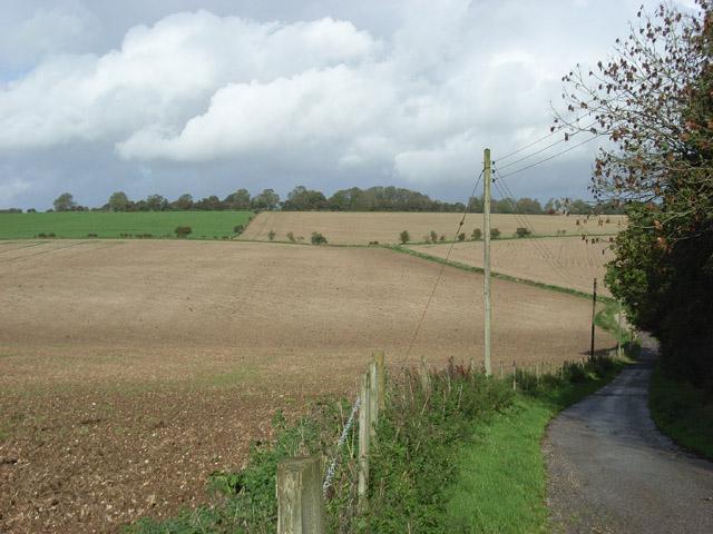 Fields, Warren Farm