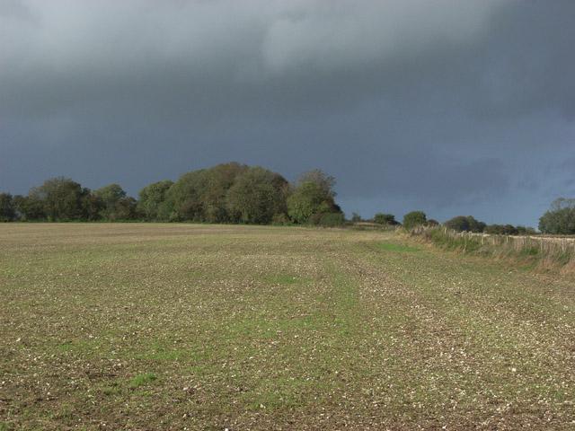 Farmland near Ogbourne St George