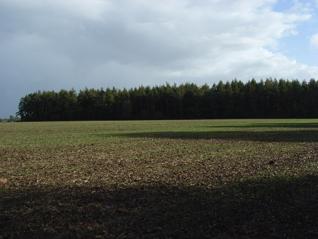 Farmland and Chase Wood
