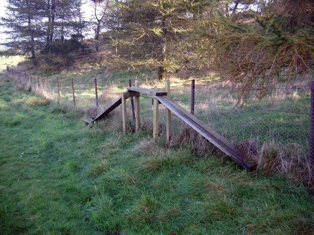 Strange structure near Kipney