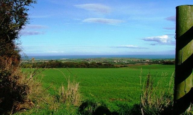 View Across the FieldsTowards Hawsker
