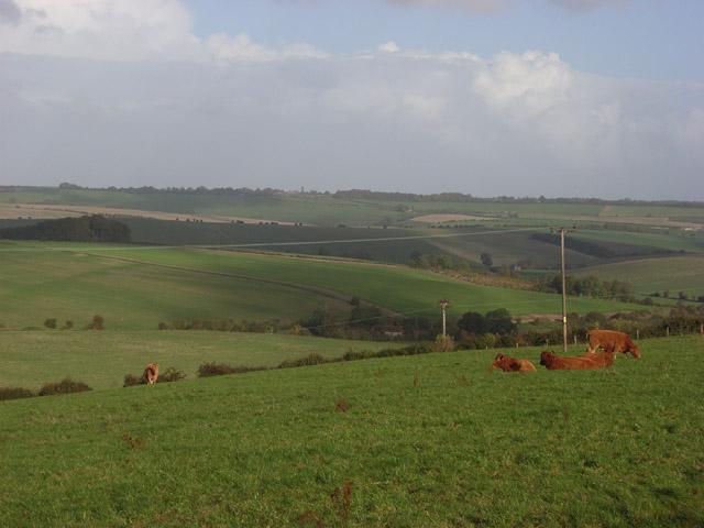 Pastures above Aldbourne