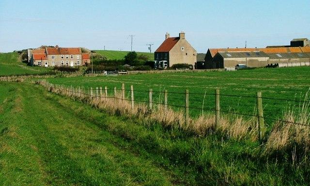 Whitby Laithes Farm