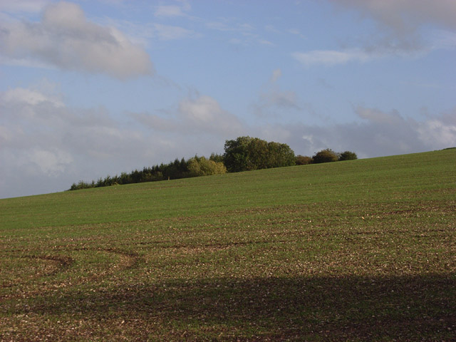 Farmland and plantation below Dudmore Lodge