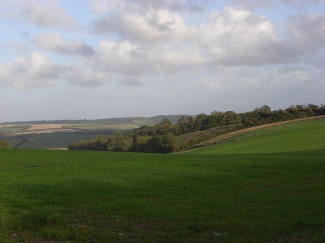 Farmland and wood above Aldbourne