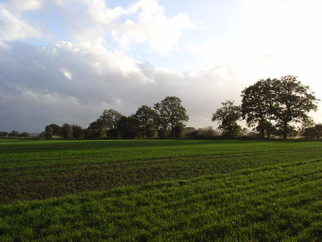 Farmland, Hillwood