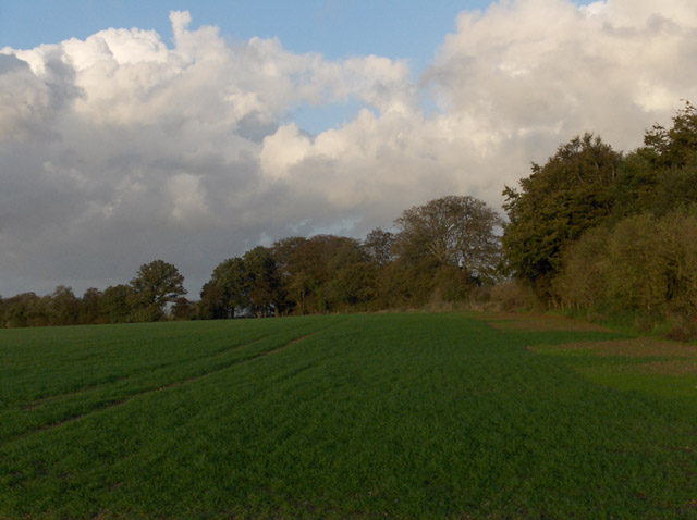 Farmland, Stock Close