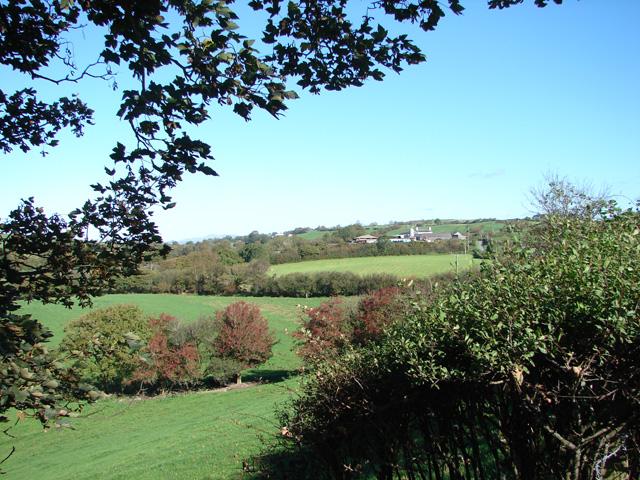 Gorslas Farm