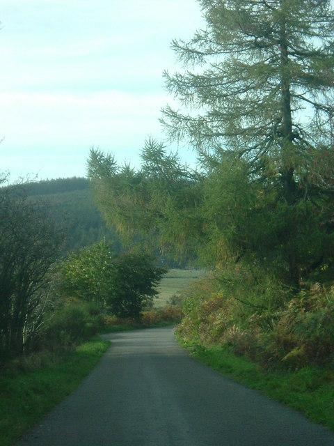 View down Bankhead road.