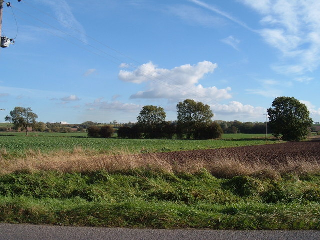 Field on road to Clayworth from Hayton