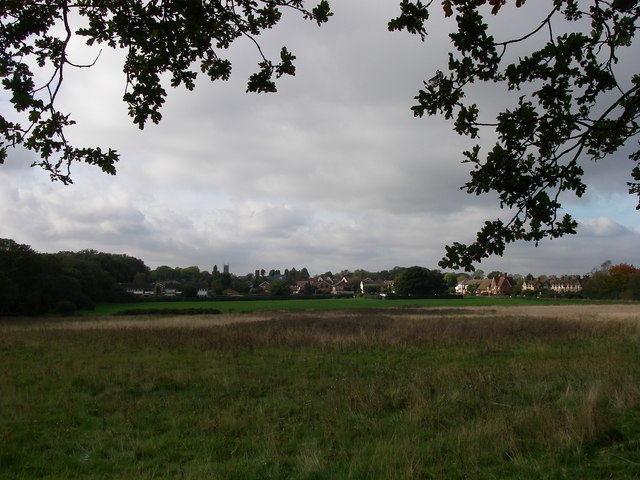 Hainault Forest and Chigwell Row Common