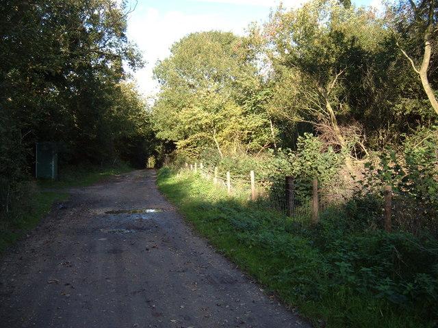 Lane to Clarborough Nature Reserve