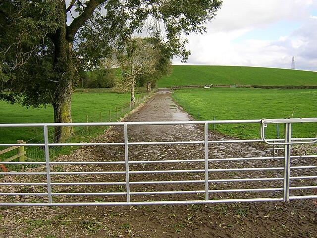 Farm Track at Blaiket Mains