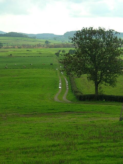 Fields Near Stonehouse