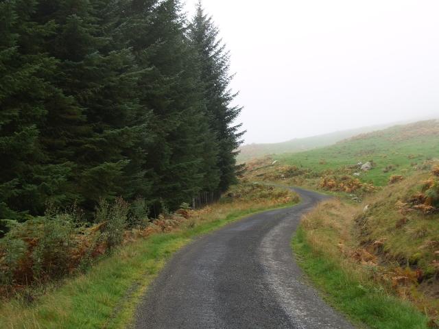 Forest road, Bridge of Ericht