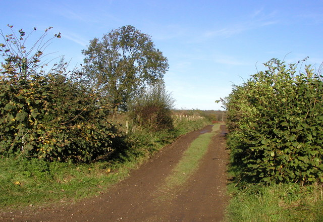 Footpath to Dick Hill
