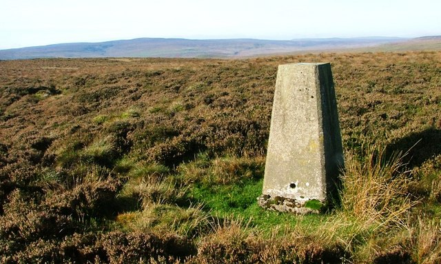 Trig. Point, Peat Moor Hill