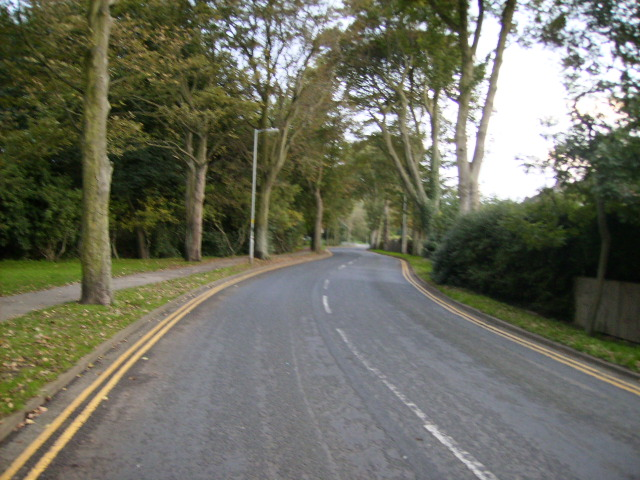 Lady Edith's Drive