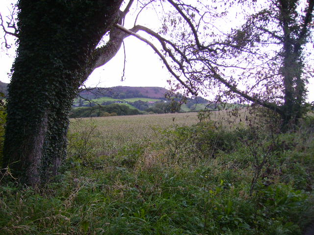 View towards Scalby Nabs