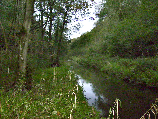 The River Derwent in Forge Valley