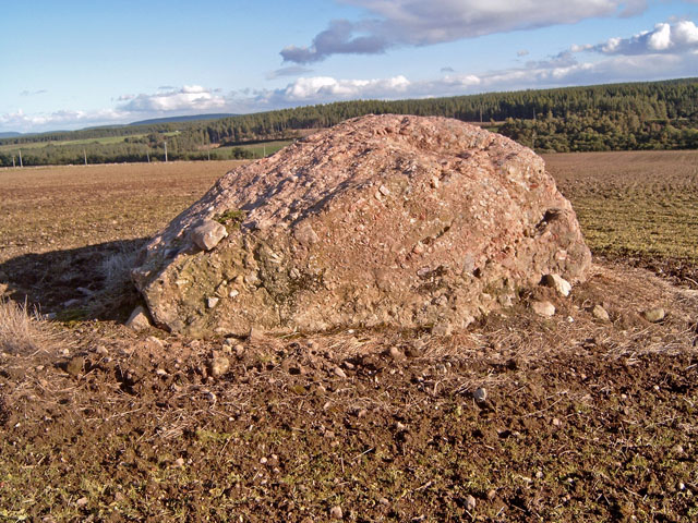 Erratic near the Moyness Cairn