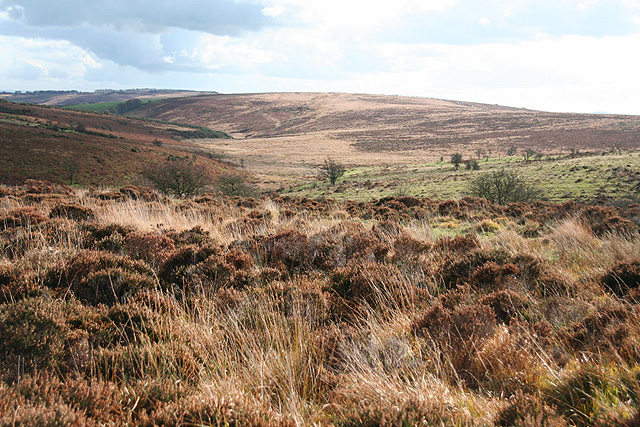 Molland: above Soakey Moor
