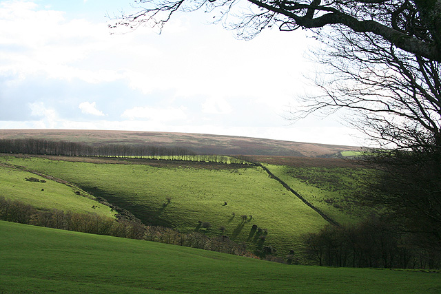 North Molton: towards Darlick Moor