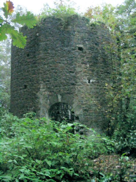 Ivy Tower in Clyne Valley Country Park