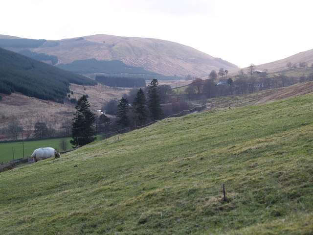 Looking up the Ettrick Valley from Scabcleuch