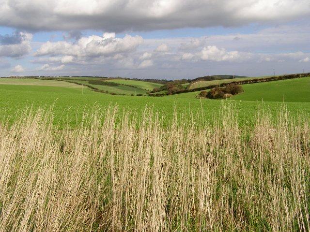 View along Brimstone Bottom towards East Chaldon