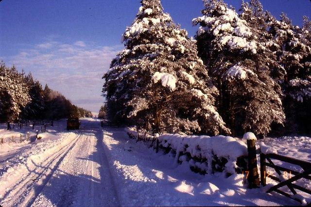 Snowscene near Sweethope Lough